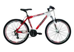 Mountain Bike basic