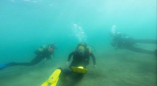 surfcamp y buceo en españa