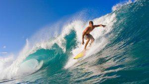 Surf Festival 1